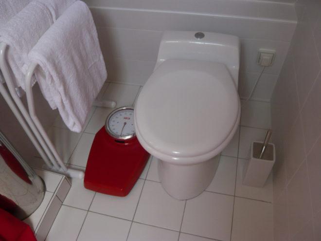conseils pour d boucher un wc. Black Bedroom Furniture Sets. Home Design Ideas