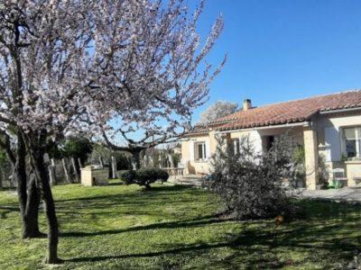 location maison à Carpentras