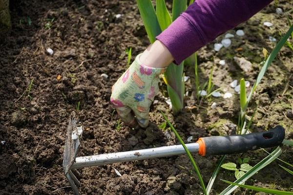 Nettoyage outils de jardin