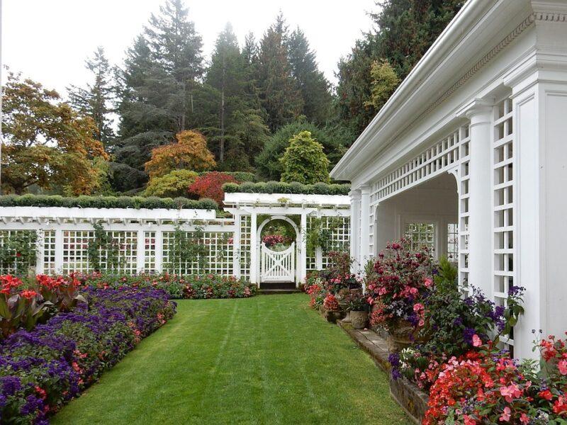 jardin pour embellir votre maison